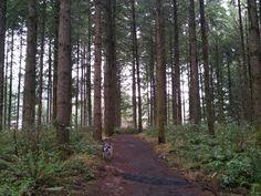 Peavy Arboretum, Corvallis Oregon