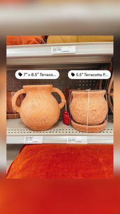 Dried Flowers, Terracotta, House Plants, Vase, Target, Flower Preservation, Indoor House Plants, Foliage Plants, Houseplants