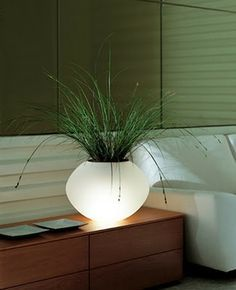 How great would this be in the flower bed with a solar light!