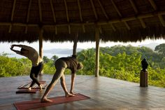 Embrace Your Purpose: Live Your Bliss Yoga Retreat led by Silvia Mordini www.alchemytours.... #YogaRetreat #YogainMexico #Yoga #2014YogaRetreat #Dharma #AlchemyofYoga
