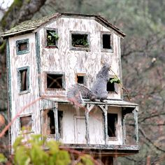 A former birdhouse, now a squirrel house! Squirrel Home, Squirrel Feeder, Bird Feeders, Lincoln Logs, Bird Aviary, Little Birdie, Outside Living, Nesting Boxes, Animal House