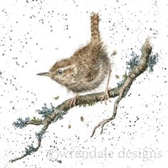 Wrendale Designs by Hannah Dale The King of Birds Greeting Card - Set of Three Watercolor Bird, Watercolor Animals, Bird Pictures, Pictures To Paint, Wrendale Designs, Card Designs, Different Forms Of Art, Photo Images, Wildlife Art