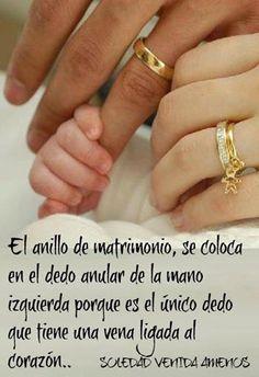 El anillo de matrimonio, se coloca en el dedo anular de la mano izquierda porque es el único dedo que tiene una vena ligada al corazón.