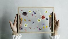 Wedding Bouquet preservations