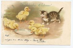 Helena Maguire - Kitty afraid about Ducklings drinking her Milk  /  1900
