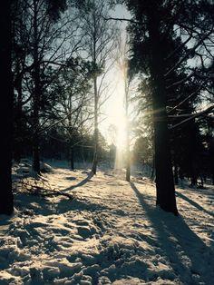 Vintersken