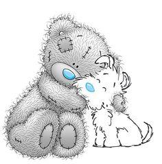 Tatty Teddy dog
