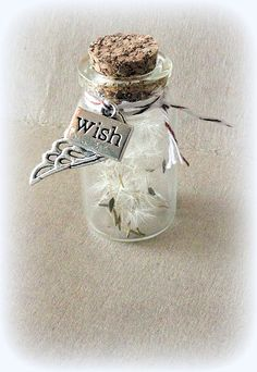 Tiny jars with dandelion fluffs inside!  These would be very cute favors at a little girls party, girls weekend, baby shower, bridal shower, etc.