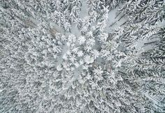 Schulenberg im Oberharz, Germany:   This photo shot by a drone shows a snow‐covered forest on Jan. 17.
