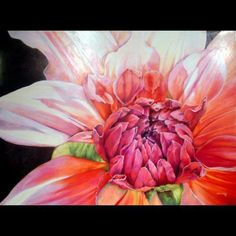 "Jessica's Dahlia by Debbie Hook colored pencil ~ 24"" x 22"""