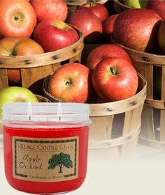 Apple Orchard-Kitchen Scented Candles | Village Candle