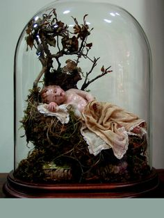 Bambino en urna de cristal
