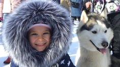 Зимняя сказка 2017. Решетиха. Гонки на собаках. Хаски. Хочу собаку.