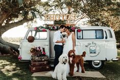 Located just out of Nowra on the NSW South Coast, Mayfield Farm is an intimate wedding venue and AirBnb property. Wedding Props, Wedding Venues, Caravan Bar, Mobile Business, Pink Vans, Wedding Portraits, Portrait Photographers, Dogs, Magic