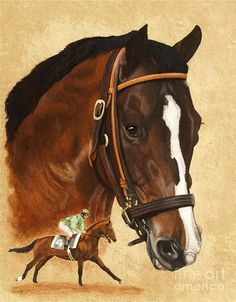 Exceller by Pat DeLong