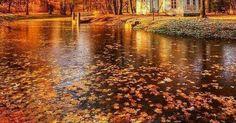 Just Pinned to Autumn: Good evening... https://t.co/kYNrjnVceT http://ift.tt/2gxHePB