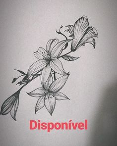 Disponível #tattoolife #tattooed #tattoo #tattooist #tattoo2me #tattoos #drawingtattoo #drawings #drawing2me #drawingch....  Disponível #tattoolife #tattooed #tattoo #tattooist #tattoo2me #tattoos #drawingtattoo #drawings #drawing2me #drawingch... Disponível #tattoolife #tattooed #tattoo #tattooist #tattoo2me #tattoos #drawingtattoo #drawings #drawing2me #drawingchallenge #drawing2us #drawing #flowerstattoo #flowersdrawing #nanquimart Tattoo Life, O Tattoo, Chest Tattoo, Forearm Tattoo Men, 3d Tattoos For Men, Dragon Tattoos For Men, Mens Lion Tattoo, Flowers, Tattoo Ideas