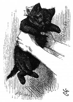 CARROLL: LOOKING GLASS. Alice's kitten, Dinah. Wood engraving after Sir John Tenniel for the first edition of Lewis Carroll's 'Through the Looking Glass,' 1872.