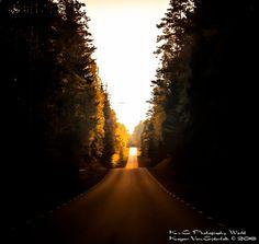 Sunny Road by Von Ejderfalk Kazper