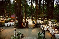 Sean Parker's LOTR Wedding THIS IS THE DREAM!!
