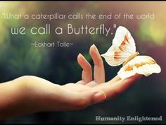 Eckhart Tolle. Wisdom. Transformation. Butterfly