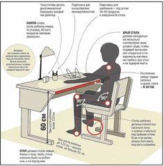 Как правильно подобрать мебель для школьника. Информационный строительный сайт |