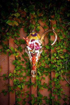 RESERVED Deer Skull Taxidermy 'Sleepwalking Through Fall'.