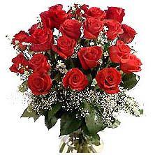 20 Roses in Hyderabad