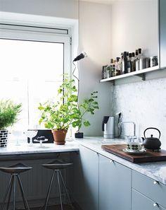 växter badrum utan fönster - Sök på Google