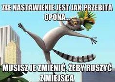 Podobny obraz Funny Memes, Jokes, True Stories, Sentences, I Laughed, Quotations, Movie Tv, Humor, Reading