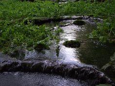 Krásnohorská dlhá lúka