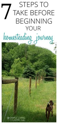 Before you start your homestead there are a few things you need to do first. Check out this list and do your homework before you invest your money via @SLcountrygal