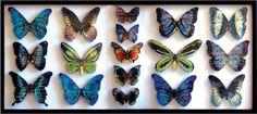 Kristin McFarlane - fused glass, butterflies Slumped Glass, Fused Glass, Kiln Formed Glass, Cast Glass, Glass Butterfly, Glass Artwork, Projects To Try, Butterflies, Artist