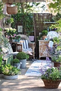 garden room. Love the boxwoods in tin buckets