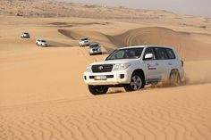 Buy one Morning Desert Safari at 300 AED and get one for FREE from New York Tours! Avail this exclusive offer from www.akoupon.com.  Offer is valid till 10th June, 2015