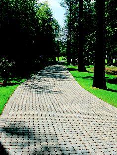 Concrete paver driveway Interlocking Pavers, Stone Driveway, Concrete Pavers, Types Of Stones, Driveways, Pavement, Curb Appeal, Sidewalk, Landscape