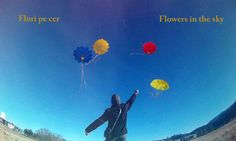 Flowers in the Sky !