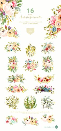 Mountainside Meadows Wildflowers - Illustrations - 3