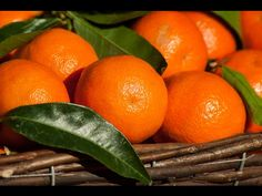 Filename: citrus, clementines, fruit, mandarins wallpaper Resolution: File size: 560 kB Uploaded: - Date: Essential Oil Safety, Citrus Essential Oil, Citrus Oil, Essential Oils, Fruits Images, Fractionated Coconut Oil, Healthy Fruits, Brunch, Lemon