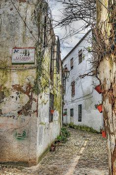 Graffitis. Síguenos en Facebook www.facebook.com/UM