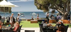 Hotel Rottnest (Quokka Arms) - WA Achievers Us Travel, Places To Travel, How To Use Hashtags, Open Table, Quokka, Slums, Western Australia, Perth