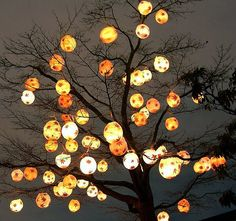 Tree of light (Lantern Festival, Chinese Gardens, Vancouver) Lights that Glow