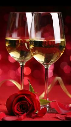 Champagne et Rose Romantic Pictures, Amazing Pictures, Live Wallpapers, Red Gold, Happy Valentines Day, Red Roses, Red Wine, Happy Birthday, Romance