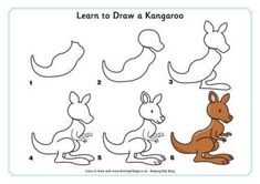 Learn to Draw a Kangaroo Aussie animals