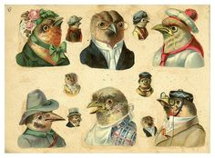 Birds in hats. What's not to love?