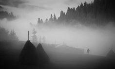 In The Dark by Guy Cohen