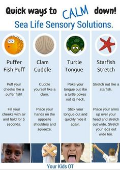 Superstars Which Are Helping Individuals Overseas Quick Ways To Calm Down Sea Life Sensory Solutions Includes A Free Printable At Your Kids Ot Emotional Regulation, Self Regulation, Emotional Development, Language Development, Social Emotional Learning, Social Skills, Social Issues, Social Anxiety, Behaviour Management