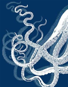 Octopus Tentacles White on Blue Octopus print by NauticalNell