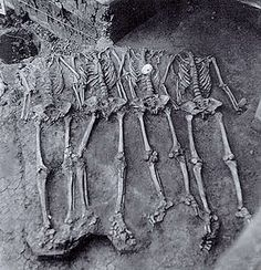 Four headless and handless male skeletons found during excavations of Mound 72 at Cahokia.