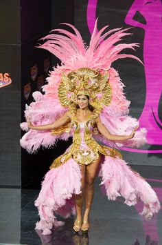 Miss Universe 2013 National Costumes. Some of these costumes are amazing, others...not so... (c'mon USA.)